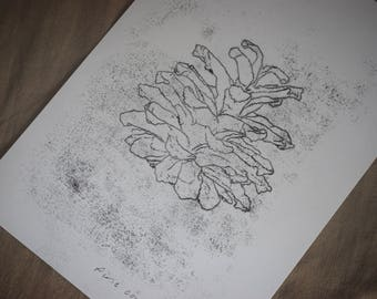 Original A4 monotype print: Pine cone II