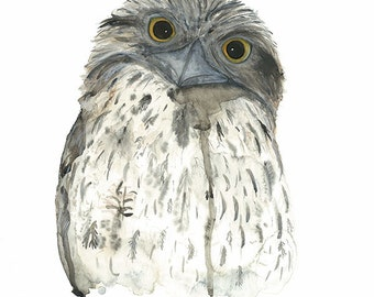 Tawny Frogmouth Print, Australian Native Bird Art, Australian Watercolour, Nature Wall Art, Made in Australia Fauna Gift