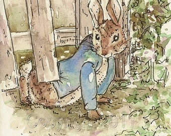 Peter Rabbit, Under the Fence,  ACEO Print