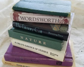 Dollhouse books, Tiny books, Miniature books, Little book, Book collection, Stack of books