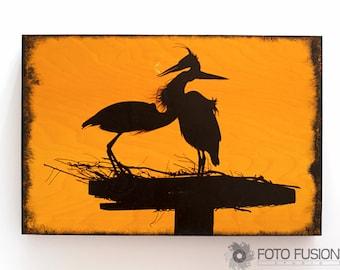 The Hug: Great Blue Heron, water bird Photo Transfer Wall Art on Wood, Nature, Bird and Wildlife Photography