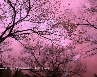 Nature Photography, Dreamy Surreal Fantasy Pink Trees, Whimsical Pink Nature Wall Art, Fantasy Nature Prints, Pink Girls Room Nursery Decor