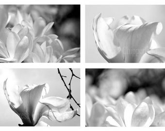 Black and White Photography, Spring Photo Set,Magnolia Prints,Cottage Garden Image,Beautiful Floral Art,Affordable Home Decor,4x6,8x12,16x24