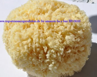 Natural sponge for body care, first quality, genuine natural sponge BS 0610