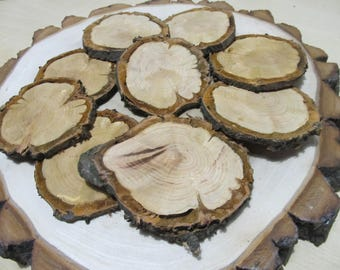 Very old unique Slices of wild cherry. 8-10 cm (10 pack). Unique Wood Slices, Wood Slices for Pendents,Slice for Craft
