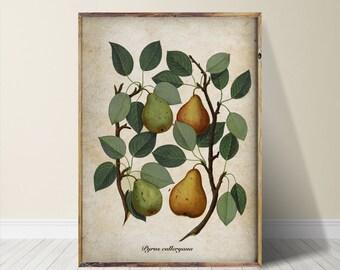 Tree Print Tree Art Tree Wall Art
