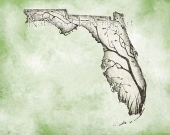8 x 10 Florida Art for Home Decor, Mint Green Wall Art Florida State Print, Florida Print, Green and Brown Tree Art (392)