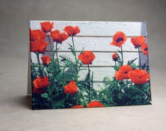Poppy Seed Paper Flower Print Recycled Cotton Blank Notecard Set - Northwest Photography