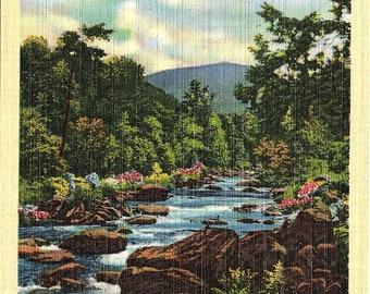 Smoky Mountains, Tennessee, Little River - Postcard - Vintage Postcard - Unused (TTT)