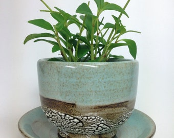 Succulent Planter, Ceramic Flower Pot, Pottery Planter, Green Cactus Pot, Stoneware Planter, Air Plant Planter, Drainage Hole, MADE TO ORDER