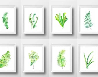 Ferns Set of 8 watercolor painting fern plant leaf wall art poster print fern varities leaf types botanical decor for home apartment decor
