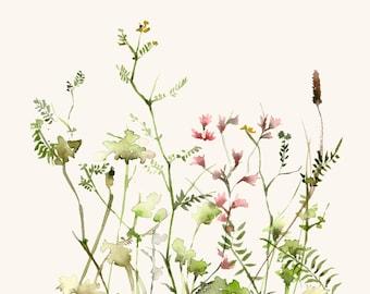 Watercolor Art Print - Wild Flower Meadow