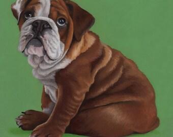 Custom Pet Portrait - painting, gift for dog lover, dog portrait, bulldog painting