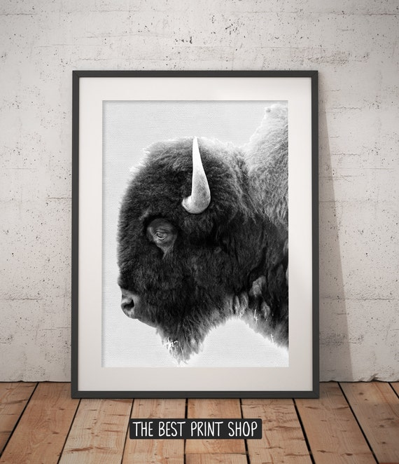 Buffalo print bison wall art black and white buffalo modern minimal animal photography printable art instant download 18 x 24