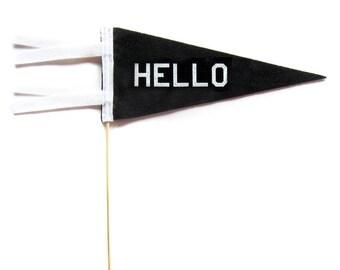 Mini Pennant - Hello