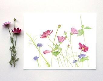 Wildflowers Watercolor Painting, Wildflower Print, Watercolor Flower Print, Pink Flowers, Cosmos, Pastel, Floral Art, Botanical Artwork