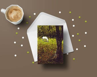 New Forest card