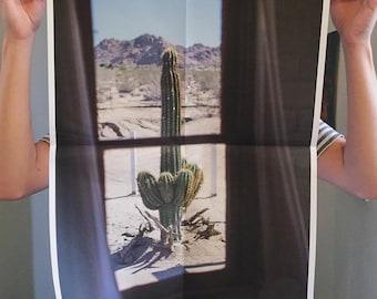 "Newsprint Photo Print, Limited Edition - Untitled (Cactus Window), 2015 (17""x22"")"