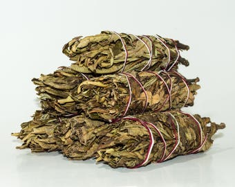 "Yerba Santa Smudge Incense 5""-6"" Bundle (6 pcs)"