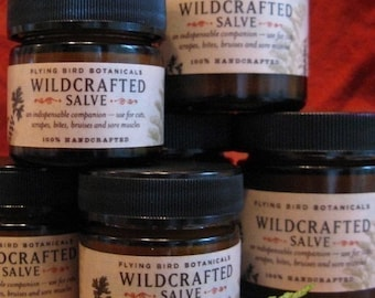 0210 1 oz wildcrafted salve
