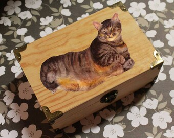 Gift for mother cat, Cat jewelry box, Personalized treasure Box, custom cat portrait, custom pet portrait, cat home decor, cat painting