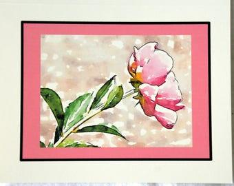 Watercolor Peonies of Nichols Arboretum Set #1 - Notecards