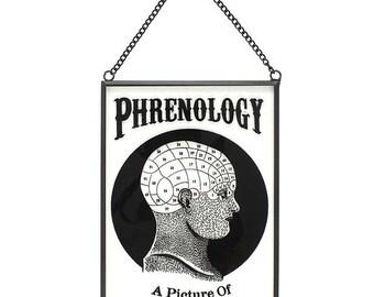 Phrenology Glass Hanging Decoration