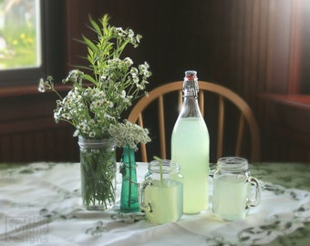 lemonade, wildflowers, dining room art, cafe restaurant, country home decor, kitchen art prints, garden, still life photography, summer art