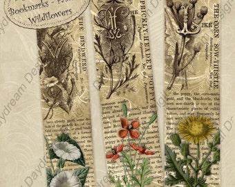 Instant Download Digital Printable Bookmarks Familiar Wildflowers - jpg or pdf