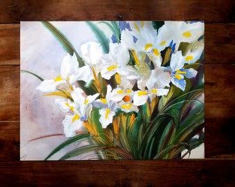 White Iris Watercolor Painting by Kate Mihaliskaia, Russian Art, Botanical Art, Kate Mihaliskaia Artist, Flower Painting, Original Painting