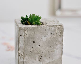 Concrete Succulent Holder