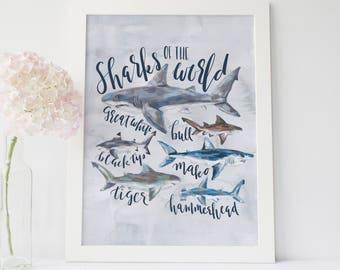 Shark Print, Shark Species, Shark Nursery Decor, Sharks of the World, Ocean Wall Art, Shark Watercolor, Nautical Nursery, Shark Lover Gift