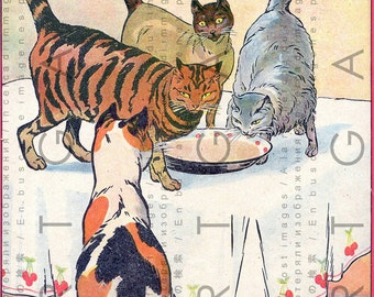 Cats Sharing a Meal Lovely Vintage Illustration. Rare Digital Vintage Kitten Download. Printable Digital Cat Art.