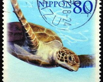 Turtle, Marine Animals, Japan -Handmade Framed Postage Stamp Art 22393AM