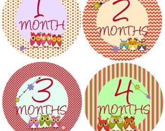 Bodysuit Monthly Stickers Milestone Stickers Baby Month Stickers Monthly Baby Stickers Photo Sticker Month by Month Baby Sticker Shower Gift