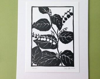 Salal, letterpress print