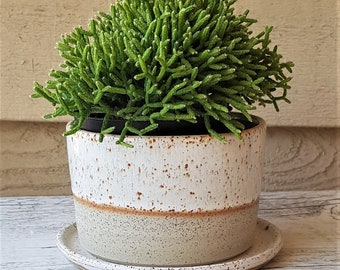 Handmade stoneware ceramic planter with saucer