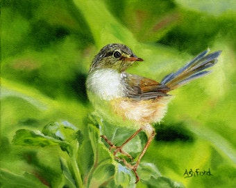 Looking for Breakfast Wren, fine art paper print