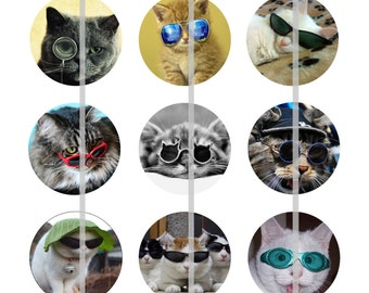 """Cat Magnets, Cat Pins, Cats in Shades, Cool Cats, Cat Party Favors, 1"""" Flat Bk, Hollow Bk, Cabochons, 12 ct"""