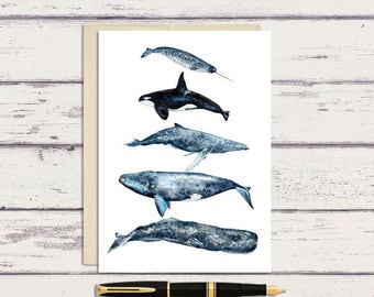 Watercolor Whales Chart Greeting Card /  5 x 7 Greeting Card/ A7 Watercolor Greeting Card / Beach Card / Whale Card / Blank Card