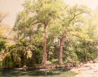 Swimming Hole, 'Spring Break' Limited Edition Fine Art Photography, Image Transfer on Wood Panel by Patrick Lajoie, Texas, Krause Springs