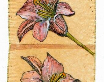 Ink Drawing on teabag 4, flower drawing,teabag art, floral art, daylily, spring, mixed media, original art, original painting, botanical