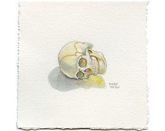 Small Realistic Skull Watercolor Painting