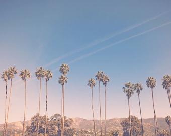California photography, palm tree print, los angeles decor, los angeles photography california living, california decor, large wall art