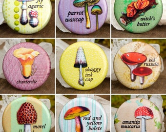 """Vintage Illustrated Fungi Buttons 