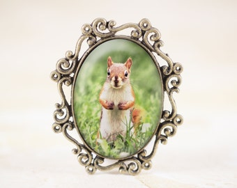 Squirrel Jewelry Brooch, Woodland Animal Jewelry, Red Squirrel Brooch Pin, Wildlife Photography Jewelry