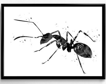 Ant, Watercolor Print, Black and White Watercolor, Poster, Room Decor, gift, Printable Wall Art (926)