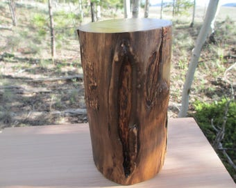 Natural Aspen Log Wood Pet Urn / Memorial Keepsake/ 38lbs