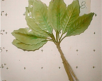 No 8 - Lacquered Holly Leaves - 2 Inch Shiny -  12 Count - Green Millinery Embellishment Vintage 50s