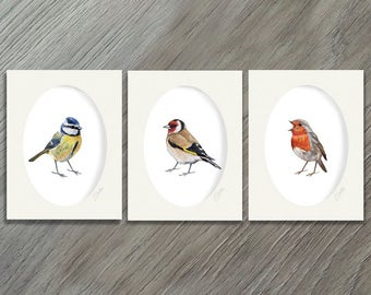 BirdLover Gift - Bird Art - Bird Artwork - Bird Print Set - Bird Print - Bird Art Print Collection - Art Print Set - Home Decor Rustic - Art